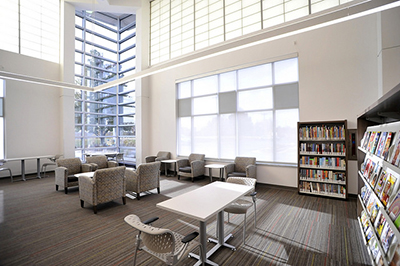 Your Library Renewed St Louis County Library